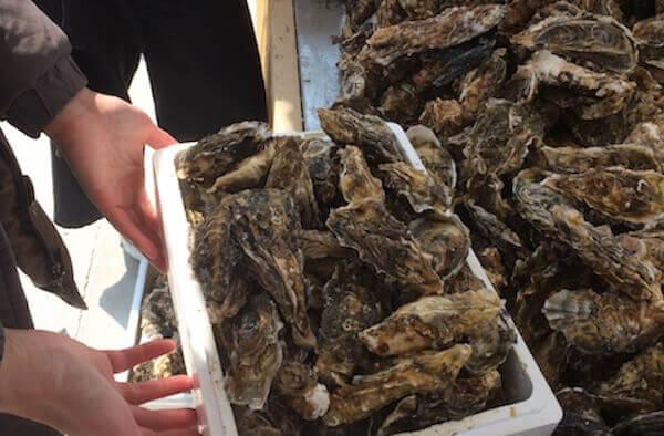 牡蠣詰め放題の値段