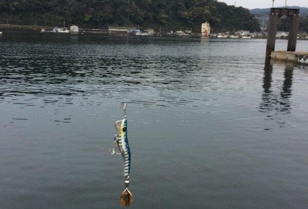 山川港で釣り